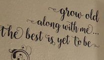 grow-old-vinyl-stickers-wall-decal-love-quote-in-master-bedroom-blk-wd653.jpg