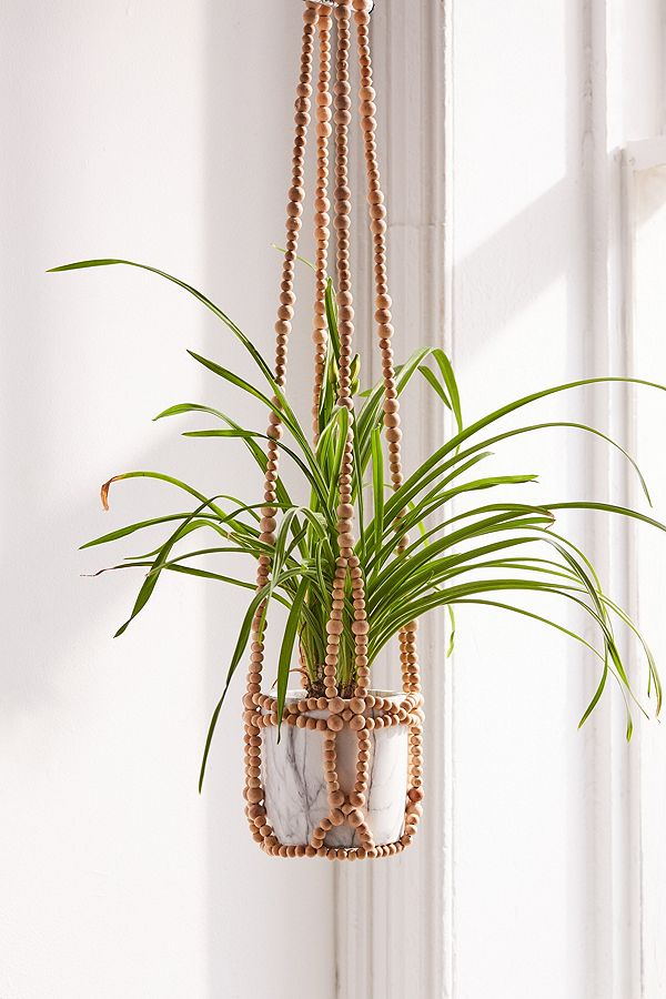 Hanging Planter are back in style!